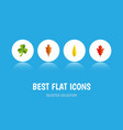 flat icon maple set of leaf maple linden and vector image vector image