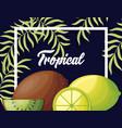 fresh lemons and kiwis tropical fruits vector image vector image