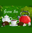 green and herbal tea leaves and hot beverage cup vector image