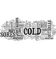 are cold sores contagious you bet text word cloud vector image vector image
