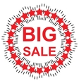 Big sale discound offer vector image