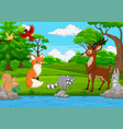 cartoon wild animal in the jungle vector image vector image