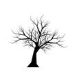 dry twig tree silhouette black on white background vector image