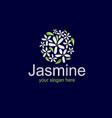 elegant jasmine logo vector image vector image