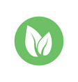 green leaf eco icon flat vector image vector image