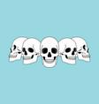 skulls views funny horror spooky skull front vector image