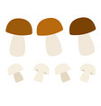 white mushrooms and champignons flat icon isolated vector image vector image