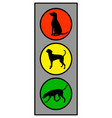 traffic light with dog on white vector image
