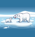 polar bear and her cub standing in the top of the vector image