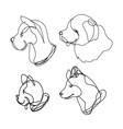 continuous line dog set vector image