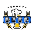 Craft beer bages vector image vector image