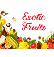 exotic fresh tropical fruits poster vector image vector image