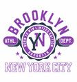 graphic design brooklyn new york city for t-shirts vector image vector image