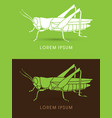 grasshopper side view vector image vector image