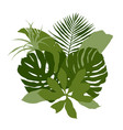 green composition with plain tropical leaves vector image vector image