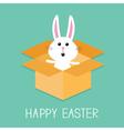 Happy Easter Cute bunny rabbit Open paper vector image vector image