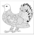 Pigeon doodle vector image vector image