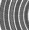 Set of detailed tire prints vector image vector image