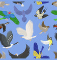 set of different wing wild flying birds seamless vector image vector image