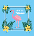 summer tropical flamingo with flowers frame vector image vector image