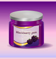 blackberry jam in jar vector image vector image