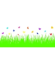Colored butterfly on a seamless grass vector image vector image