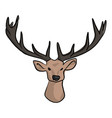 deer head with beautiful horns vector image vector image