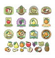 fruit badge templates labels with sample text vector image vector image