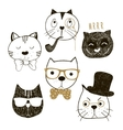Hand drawn cats faces with different emotions vector image vector image