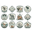 hunting club icons with animals and hunter rifles vector image vector image