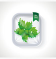 premium quality mint pack plastic tray container vector image vector image