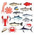 seafood luxury collection vector image