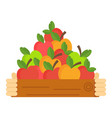 apple picking hand with box with apple vector image vector image