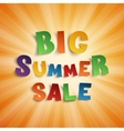 Big summer sale background vector image