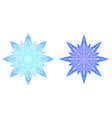 colored snowflakes from ice vector image vector image