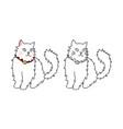 cute white persian cat vector image