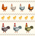 hen rooster and chicken flat vector image vector image