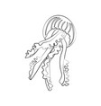 jellyfish coloring pages vector image vector image