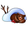 bear is sleeping in a snow den isolated on vector image vector image