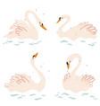 elegant swans in pastel colors vector image vector image
