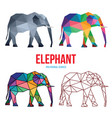 elephant low poly design vector image vector image