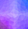 Geometric triangular low poly style graphic vector image vector image