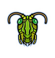 grasshopper head mascot vector image