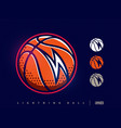 modern professional basketball icon for sport team vector image vector image