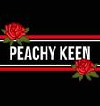 peachy keen vector image vector image