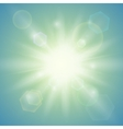 Summer sun Abstract background vector image vector image