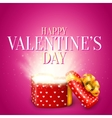 Valentine Day Gift vector image