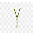 capital letter y made of green bamboo sticks on vector image