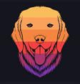 dog golden retriever retro colorful vector image vector image