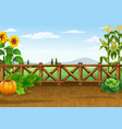farm background with various plant vector image vector image